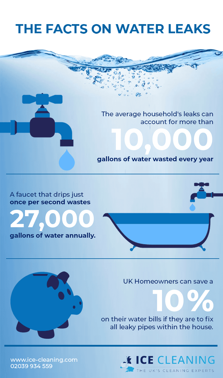 The facts of water leaks infographic